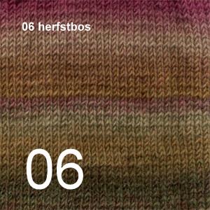 Big Delight 06 herfstbos