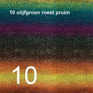 Delight 10 olijfgroen roest pruim