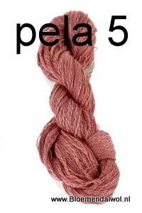 Pelagia 5