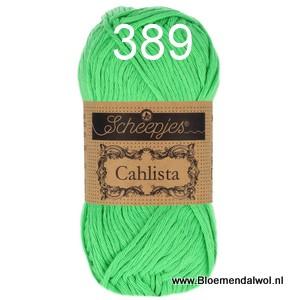 Scheepjes Cahlista 389