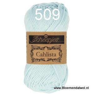 Scheepjes Cahlista 509