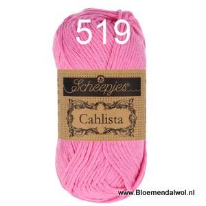 Scheepjes Cahlista 519